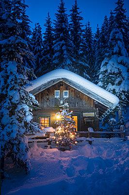 Austria, Altenmarkt-Zauchensee, Christmas tree at illuminated wooden house in snow at night - p300m2042036 by Hans Huber