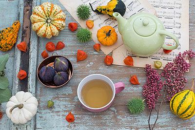 Autumnal table decoration with decorative gourds, Chinese lanterns - p300m2060267 von JLPfeifer