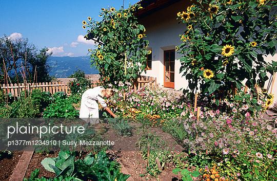p1377m1234910 von Susy Mezzanotte