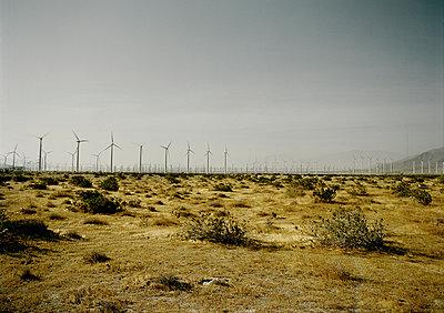 Windräder bei Palm Springs - p1171m994088 von SimonPuschmann