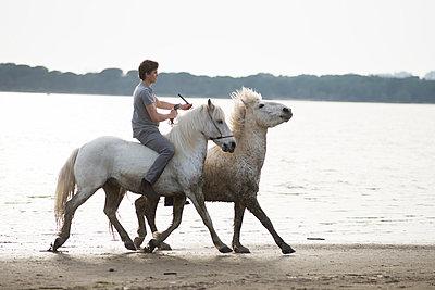 Horseback ride on the lakefront - p1041m1042371 by Franckaparis