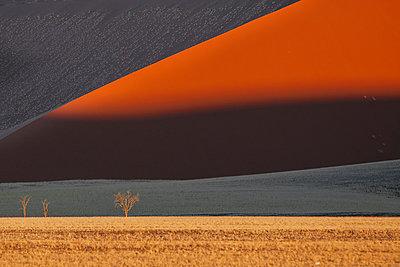 Namib - p1065m885970 von KNSY Bande