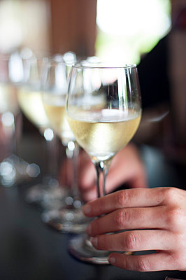 Hand on Glass of White Wine next to Row of Glasses of White Wine - p694m973676f by Novo Images