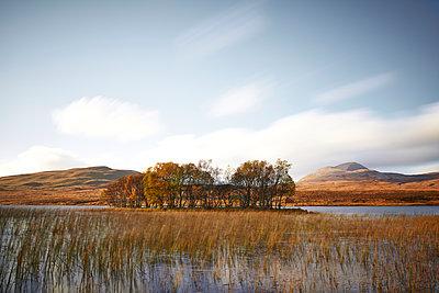 Herbst Insel, Loch Assynt - p587m1104298 von Spitta + Hellwig
