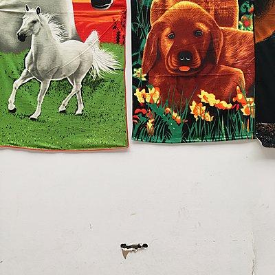 Handtücher mit Tiermotiven - p1401m2053760 von Jens Goldbeck