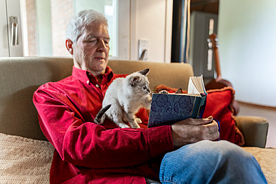 Senior man with kittens siiting on sofa reading a book - p300m2139924 by VITTA GALLERY