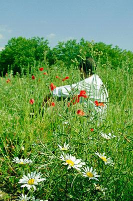Parisian parks - p6810004 by Sandrine Léon
