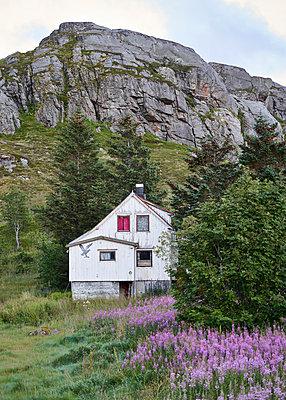 Haus am Hang - p1124m1165641 von Willing-Holtz