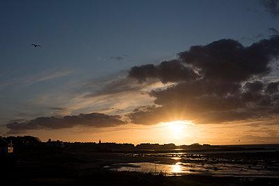 Sonnenuntergang in North Berwick - p1560m2134146 von Alison Morton