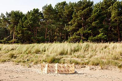 Windbreaker - p248m949425 by BY