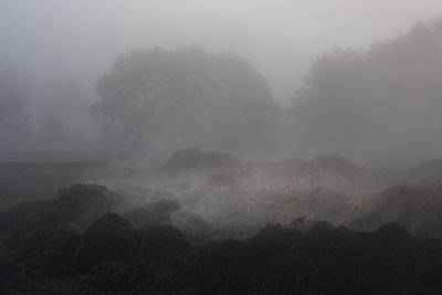 Heap of dung in the autumn fog - p739m2039121 by Baertels