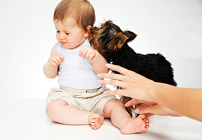 Baby with dog - p1015m763520 by Nino Gehrig