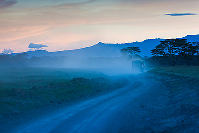 Africa, Kenya, View of Safari with lots of dust at dusk - p300m877832 by Martin Moxter