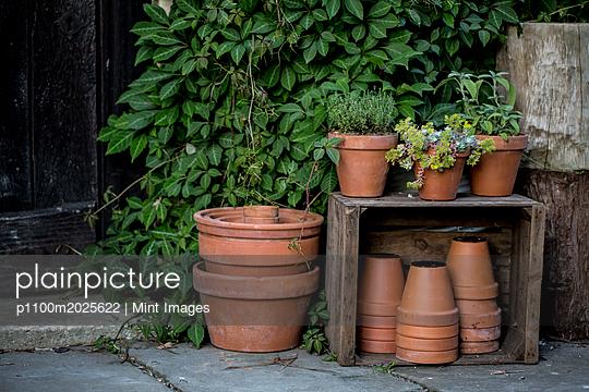 p1100m2025622 von Mint Images
