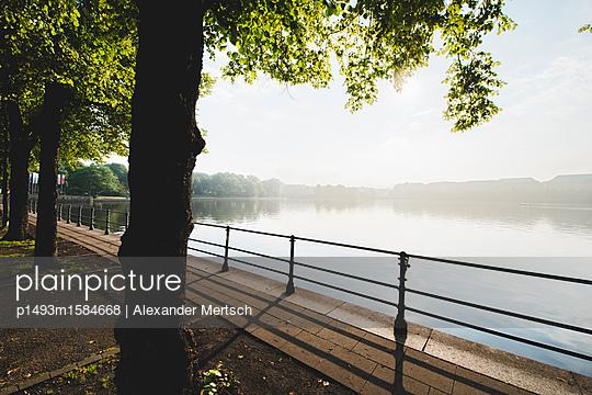 p1493m1584668 by Alexander Mertsch