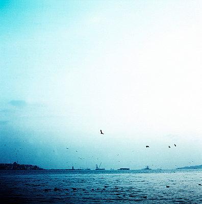 Istanbul - p9370159 by Karolina Doleviczenyi
