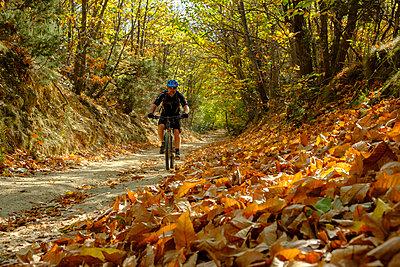 Italy, Liguria, Finale Ligure, Mountainbiker at ravine in autumn - p300m1568225 von Lisa und Wilfried Bahnmüller