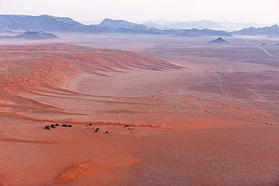 Namib Desert, Namibia, Africa - p871m1082246 by Neil Emmerson