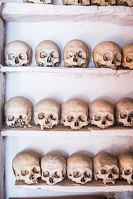 Skull  - p940m1201375 by Bénédite Topuz