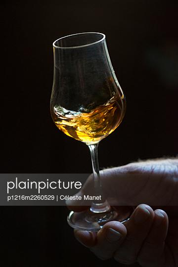Alcohol - p1216m2260529 by Céleste Manet