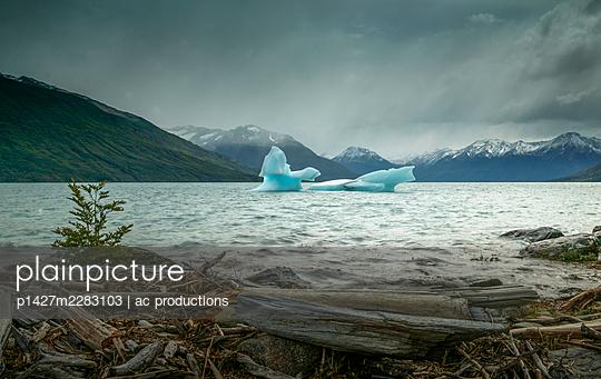Patagonia, Glacier Perito Moreno, Lake Argentino, Andes Mountains, Iceberg in Patagonia Glaciares National Park - p1427m2283103 by ac productions