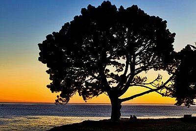Pacific Ocean sunset - p1399m1528875 by Daniel Hischer