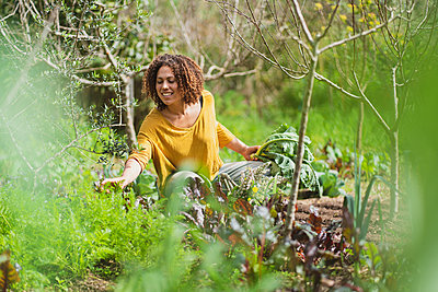 Curly haired woman squatting while picking vegetables in garden - p300m2268074 by Steve Brookland