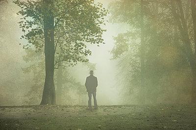 Gernany, North Rhine-Westphalia, Rear view of man standing in foggy landscape - p300m1140463 by Dirk Wüstenhagen