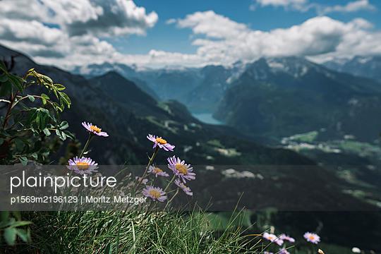Germany, Bavaria, Berchtesgardener Land - p1569m2196129 by Moritz Metzger