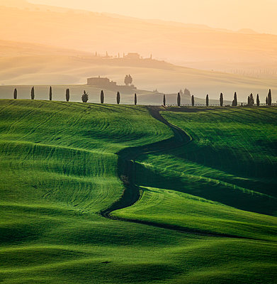 Val d'Orcia, Tuscany, Italy - p651m2033079 by Stefano Termanini
