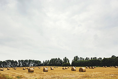 Field with bales of straw, Gillingham, Kent, England - p924m1180244 by Lena Mirisola
