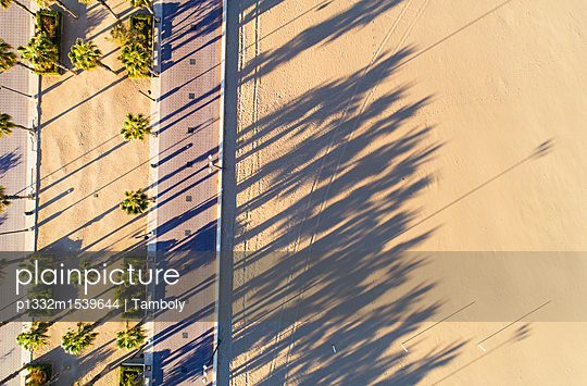 Promenade of Valencia with palm trees aerial view - p1332m1539644 by Tamboly