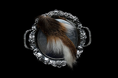 Deer tail on a tray - p1235m2056929 by Karoliina Norontaus