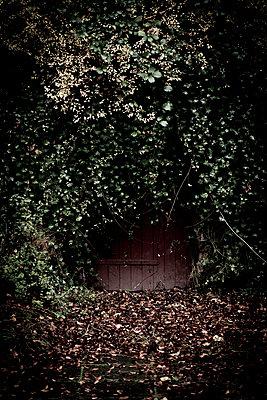 Geheimnisvolle Tür - p220m1214888 von Kai Jabs