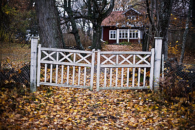 An old gate in front of a house Gotland Sweden - p31222320f by Johan Odmann