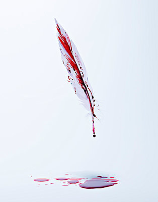 Bloody feather - p5490302 by C&P