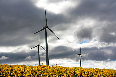 Renewable energy - p813m808931 by B.Jaubert