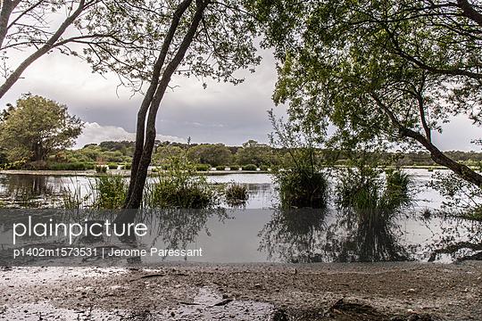 Seeufer - p1402m1573531 von Jerome Paressant