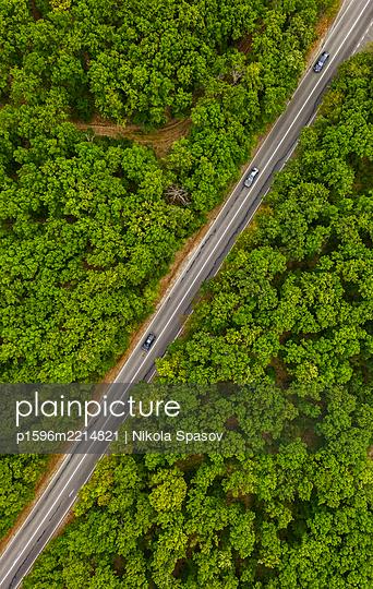 Straße durch einen grünen Wald - p1596m2214821 von Nikola Spasov