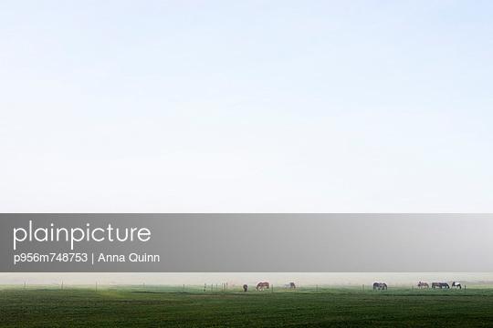 Sunrise - p956m748753 by Anna Quinn