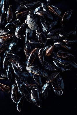 Mussels - p947m1492701 by Cristopher Civitillo
