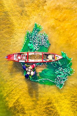Fishermen fishing in the estuary, Quang Ngai, Vietnam, Indochina, Southeast Asia, Asia - p871m2209625 by Luong Nguyen Anh Trung