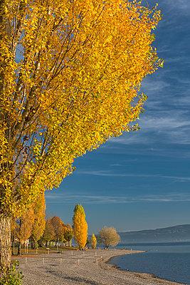 Germany, Baden-Wuerttemberg, Lake Constance, Radolfzell, Strandbad Mettnau in autumn - p300m1585462 by Holger Spiering
