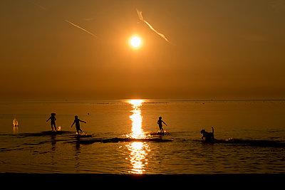 Kinder spielen mit dem Hund im See - p1212m1178666 von harry + lidy