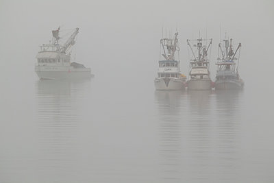 Fishing boats in Port Valdez on a foggy day, Prince William Sound, Southcentral Alaska - p442m1149534 by Zachary Sheldon