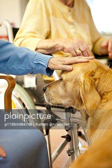 Elderly people with dog - p1195m984746 by Kathrin Brunnhofer