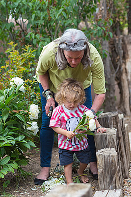 Caucasian woman and grandson picking flowers in garden - p555m1411390 by Marc Romanelli