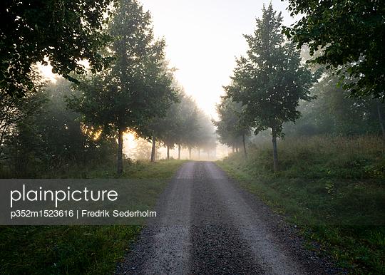 p352m1523616 von Fredrik Sederholm