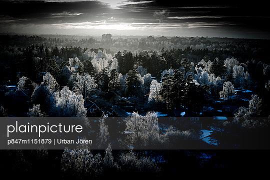 p847m1151879 von Urban Jörén