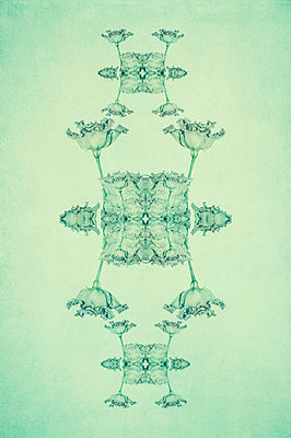 Abstract kaleidoscope pattern of lisianthus flowers on stalks on light green background - p1047m2283699 by Sally Mundy